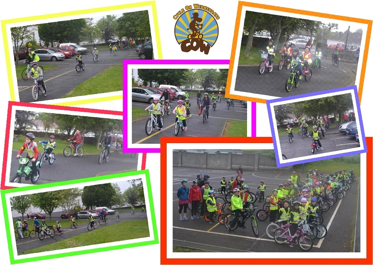 cycle on wednesday 2015