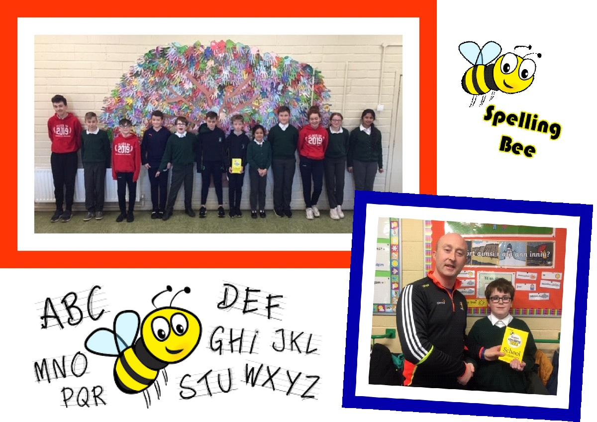 eason spelling bee preparations 2019