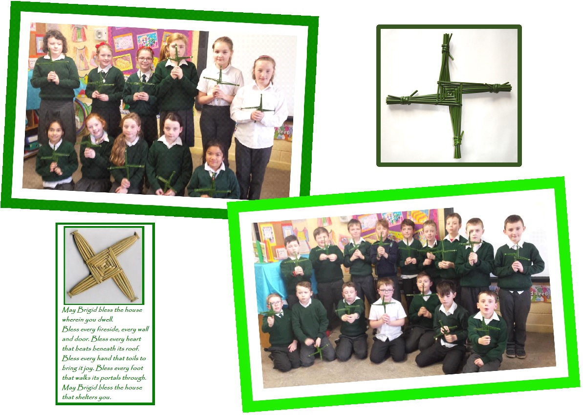 ms healys st brigids day crosses
