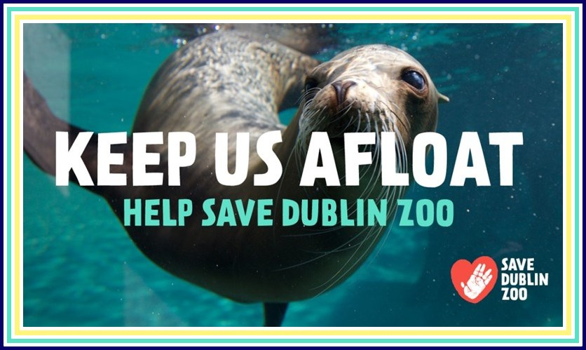 save dublin zoo