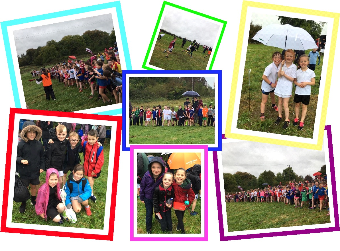 westmeath schools cross country run 2017